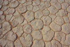 Мертвое vlei, Намибия Стоковое Изображение RF