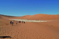 Мертвое Vlei, Намибия Стоковое Изображение