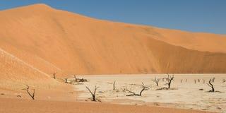 мертвое vlei пустыни Стоковые Изображения