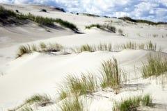 Мертвые песчанные дюны с травой стоковые изображения