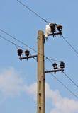 мертвые проводы аиста электричества Стоковое Изображение
