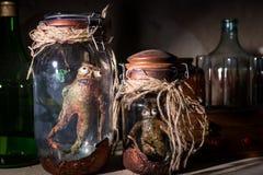 Мертвые твари внутри опарников каменщика Стоковые Фотографии RF