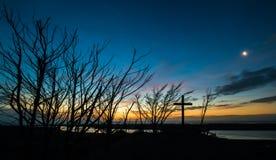 Мертвый перекрестный заход солнца деревьев Стоковая Фотография