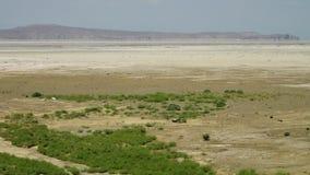 Мерцающая большая пустыня соли или черточка-e Kavir видеоматериал