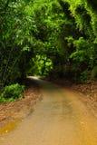 местная дорога Стоковое фото RF