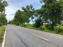 Местная конкретная дорога с деревом Стоковая Фотография