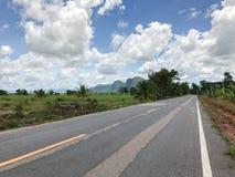 Местная конкретная дорога с деревом Стоковое фото RF