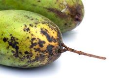 Местное манго изолированное на белой предпосылке Стоковое фото RF