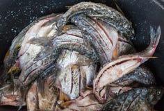 Местные тайские замаринованные fishs Стоковые Фотографии RF
