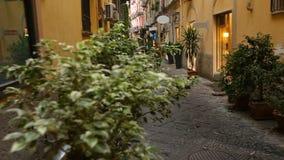 Местный житель peeking от кустов на 2 молодых дамах идя вдоль улицы сток-видео