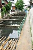 Местный пакостный канал сторона тайской общины. стоковое фото rf
