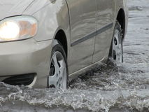 Местный поток - вождение автомобиля через воду Стоковые Фото