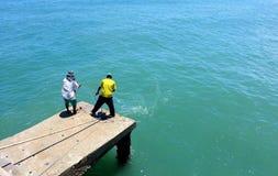 2 местных люд помогая одину другого для того чтобы вытянуть сетчатую рыбную ловлю от моря Стоковое Изображение