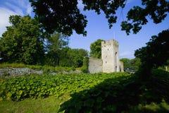 Место всемирного наследия ЮНЕСКО visby в sweden.GN Стоковые Фото