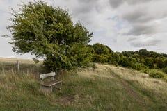 Место деревянной скамьи на вершине холма стоковые фото