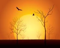 Место захода солнца иллюстрация штока