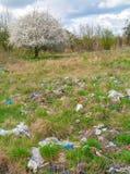 Место захоронения отходов и дерево Стоковые Фото