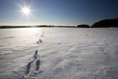 Место зимы Стоковое фото RF