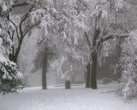 Место зимы стоковое изображение rf