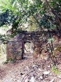 Место, который нужно вспомнить: кладбище животного стоковое фото rf