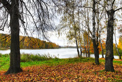 место осени Стоковая Фотография RF