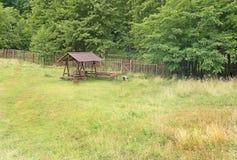Место отдыха в лесе и fance Стоковое Фото