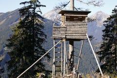 Место охотников высокое Стоковые Фото