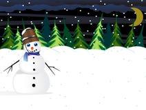 Место полесья зимы ночи Стоковые Изображения RF
