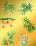 место праздника предпосылки обрамленное рождеством Стоковые Фото