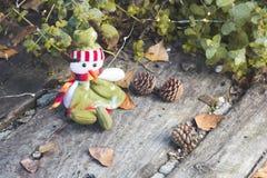 место праздника предпосылки обрамленное рождеством Стоковое Изображение RF