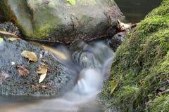 Место природы потока Стоковое Фото