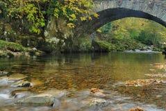 место реки осени Стоковые Изображения