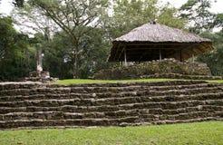 место руины bonampak стоковое изображение
