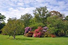 Место сада Стоковые Изображения