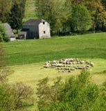 место сельской местности Стоковая Фотография RF