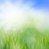 Место солнца поднимая в утро сезона лета мы Стоковое Изображение