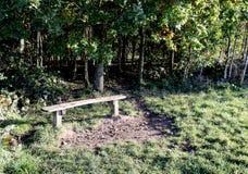 Место стенда на крае леса Стоковые Фото