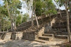Место Calakmul майяское археологическое в Мексике Стоковое Изображение RF