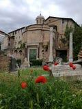Место romain Италии Рима форума интереса Стоковые Изображения