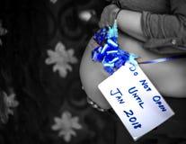8 месяцев рему младенца стоковое изображение