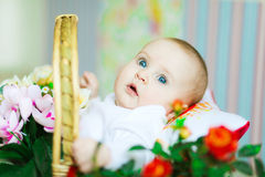месяц девушки 5 младенцев красивейший старый стоковая фотография rf