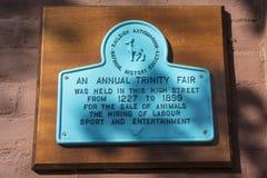 Металлическая пластинка ежегодной троицы справедливая в Rayleigh Стоковая Фотография