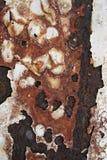 металл абстрактного искусства Стоковое Изображение RF