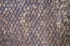 металл решетки ржавый Стоковые Изображения RF