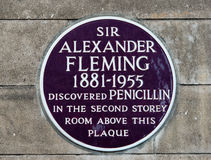 Металлическая пластинка Александра Fleming Стоковое Изображение RF