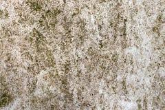Металлическая текстура в зеленом цвете Стоковые Изображения