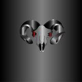 Металлический серебряный буйвол черепа Стоковые Фотографии RF