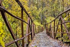металл моста старый Стоковое фото RF