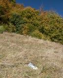 Метка тропки на камне Стоковое фото RF