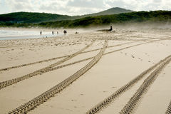 Метки покрышки на offroad управляя дюне взморья Стоковые Изображения RF
